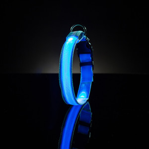 An image of a glow-in-the-dark LED dog / pet collar