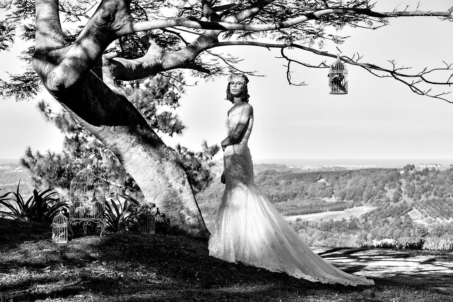 Black & white photo of a bride standing under a large flame tree in her wedding gown designed by Gold Coast Bridal Lounge